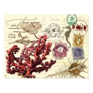 Marine Life Collage with Postmarks and Stamps Postcards
