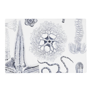 Marine Life / Marine Biology Strange Sea Creatures Placemat