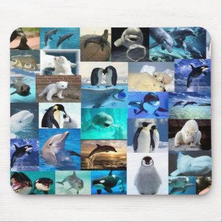 Marine life mouse pad