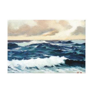 Marine navy//Marinates