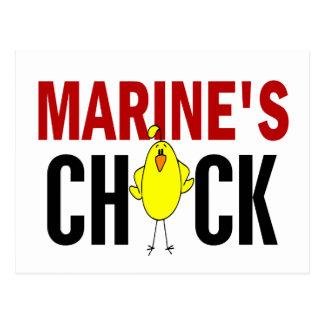 MARINE'S CHICK POSTCARD