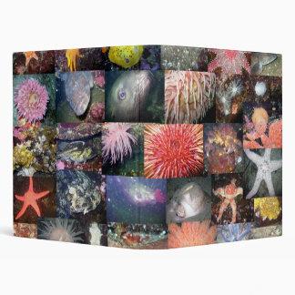 Marine Species Collage - Avery Binder