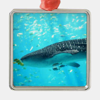 Marine Water Chic Stylish Cool Blue Whale Shark Square Metal Christmas Ornament