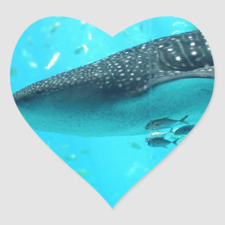 Marine Water Chic Stylish Cool Blue Whale Shark Stickers