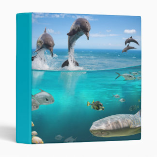 Marine Wildlife Binder