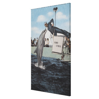 Marineland, Florida - Sailor Mouthfeeding Stretched Canvas Prints