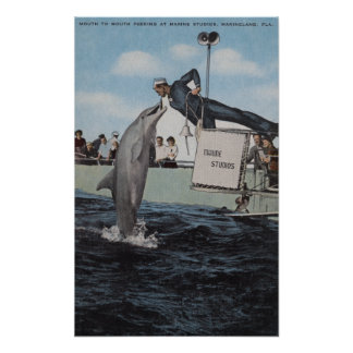 Marineland, Florida - Sailor Mouthfeeding Poster