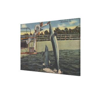 Marineland, Florida - View of Feeding Porpoises Canvas Prints