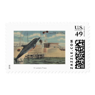 Marineland, Florida - View of Pudgy the Postage