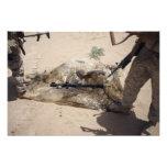 Marines Photo Print