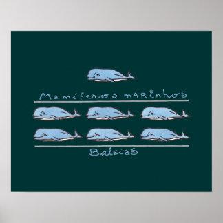 marinhos de los mamíferos - baleias póster