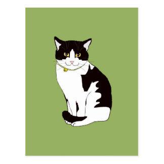 Mario da Cat Postcard