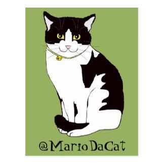 Mario da Cat Post Cards