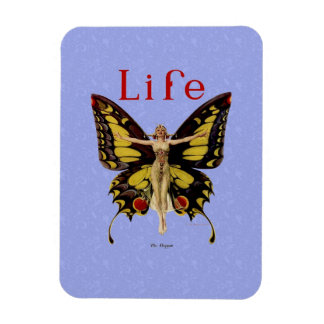 Mariposa 1922 de la aleta de la vida del vintage