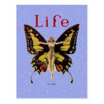 Mariposa 1922 de la aleta de la vida del vintage postal