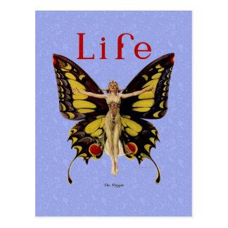 Mariposa 1922 de la aleta de la vida del vintage tarjeta postal