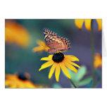 Mariposa 1 felicitación