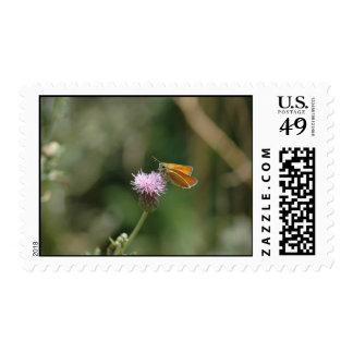 Mariposa 1 sellos