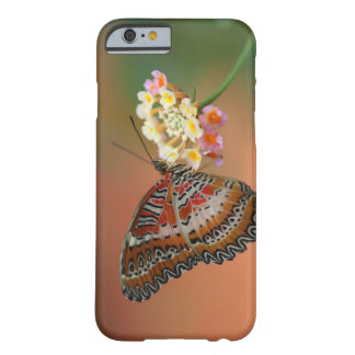 mariposa 2 funda barely there iPhone 6
