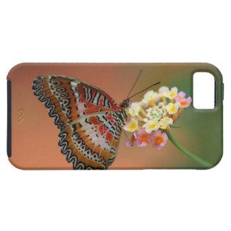 mariposa 2 funda para iPhone SE/5/5s