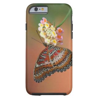 mariposa 2 funda resistente iPhone 6