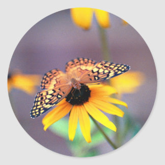 mariposa 3 pegatina