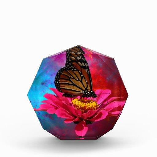mariposa abstracta moderna de la margarita del ger