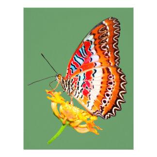 Mariposa aislada del cethosia en la flor plantilla de membrete