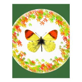 Mariposa aislada del naranja de Marruecos Membrete A Diseño