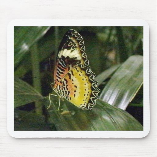 mariposa alfombrillas de raton