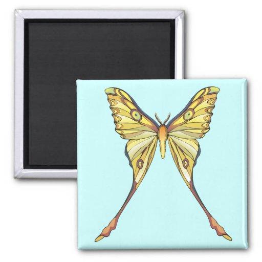 Mariposa amarilla bonita imán para frigorifico