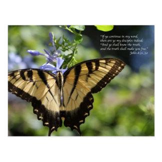 Mariposa amarilla de Juan 8 Swallowtail Tarjeta Postal