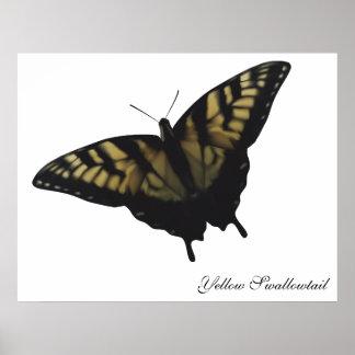 Mariposa amarilla de Swallowtail Póster