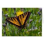 Mariposa amarilla de Swallowtail Tarjetón