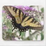 Mariposa amarilla del AA Swallowtail Tapete De Ratón