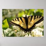 Mariposa amarilla en la impresión de la lila impresiones