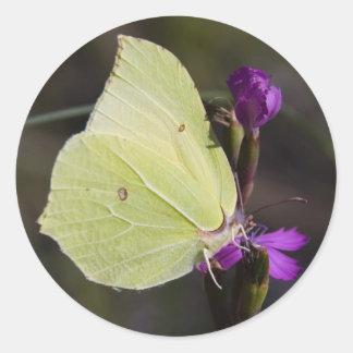 mariposa amarilla pegatina redonda