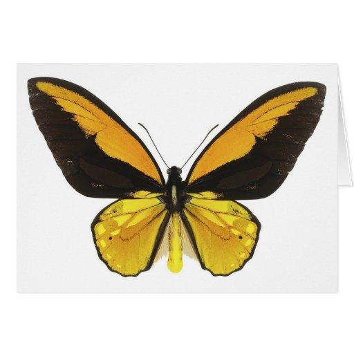 Mariposa amarilla y negra tarjeta de felicitación