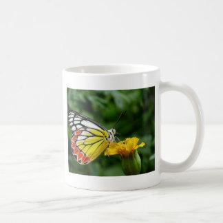Mariposa amarilla y roja en la flor amarilla taza de café