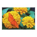 Mariposa anaranjada brillante impresiones en lienzo estiradas