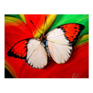 Mariposa anaranjada de la extremidad tarjeta postal