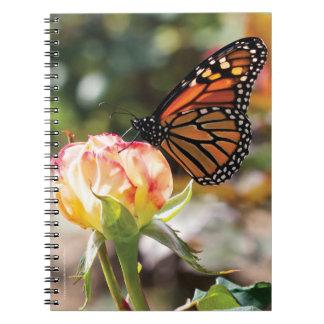 Mariposa anaranjada en color de rosa - cuaderno