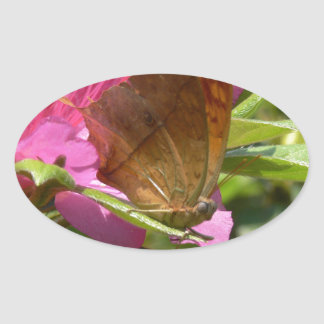 Mariposa anaranjada en el pegatina rosado, real de