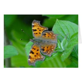 Mariposa anaranjada hermosa tarjeta de felicitación