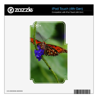 Mariposa anaranjada iPod touch 4G skin