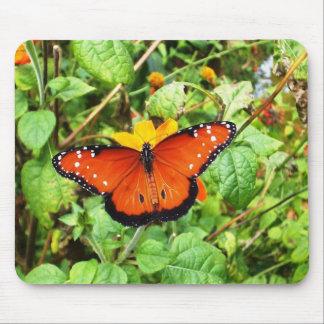 Mariposa anaranjada mouse pad