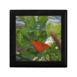 Mariposa anaranjada y negra en el lago cajas de recuerdo