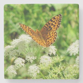 Mariposa anaranjada y negra en las flores blancas posavasos de piedra