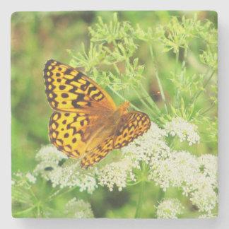 Mariposa anaranjada y negra y flores blancas posavasos de piedra