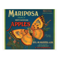 Mariposa Apples Postcard